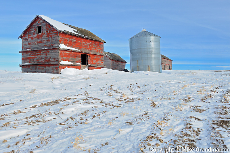 Old barn and grain bins<br /> Viceroy<br /> Saskatchewan<br /> Canada