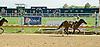Alexandra's Grace winning at Delaware Park on 10/1/12