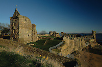The historic remains of St Andrews Castle, St Andrews Fife. St Andrews is the Patron Saint of Scotland