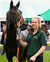 Simply Breatless with stable lass in the winners enclosure after winning The Bathwick Tyres Novice Auction Stakes(plus 10, Div 2), during Afternoon Racing at Salisbury Racecourse on 13th June 2017