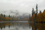 Fog rolls along the Rogue River, fall, Oregon