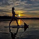 SurfTek
