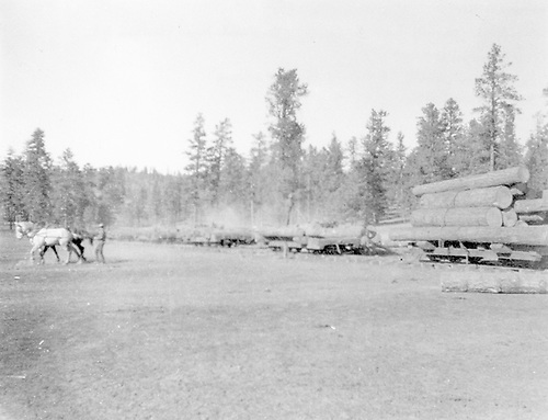 &quot;Parbucking [sic] - probably Pagosa Lumber Co. and Rio Grande, Pagosa &amp; Northern RR&quot; (should be parbuckling)<br /> Rio Grande, Pagosa &amp; Northern    Taken by Perkins, Clayton Clark