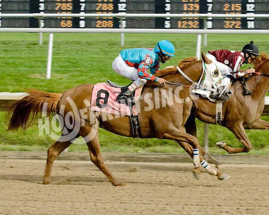 Monarkos CS winning at Delaware Park on 6/22/09