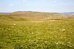 Moorland countryside, Drumaldrace, Wether Fell, Yorkshire Dales national park, England, UK