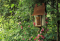 Rustic birdhouse as garden art in shade garden covered in blooming wild rose