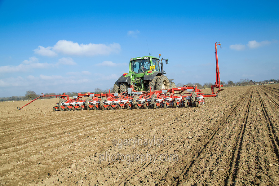 Drilling sugar beet with 18 row Accord drill & John Deere tractor with autosteer - Norfolk, March