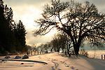 The tree lined centennial trail on the shore of Lake Coeur D ALene in North Idaho is covered by a fresh December snow.