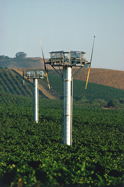 Wind machines stand ready to move air during frost warnings to protect young grapes in spring.