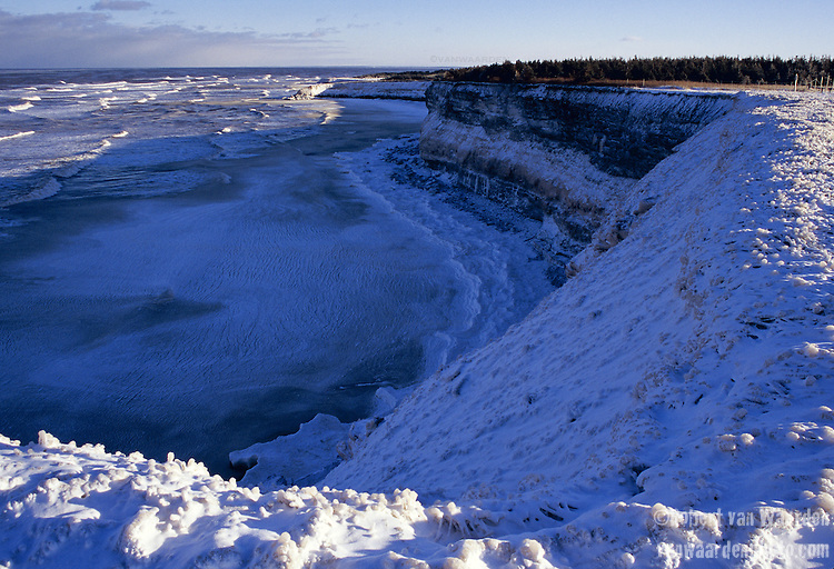 Ice blankets the shore of Prince Edward Island's Cavendish National Park, Canada. Winter often means that the Gulf of St. Lawrence is covered in ice.