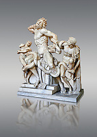 Statue group identified as as the Laocoon described by Pliny as a masterpiece made by the sculptors of Rhodes. The Laocoon depicts a scene from the Trojan War in which Athena and Poseidon sent two great serpants to wrap themselves around Laocoon and his two sons to kill them. Circa 40-30BC, Pope Clement XIV coillection, Vatican Museum Rome, Italy,  grey background
