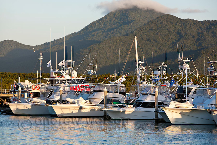 Game fishing boats in Marlin Marina.  Cairns, Queensland, Australia