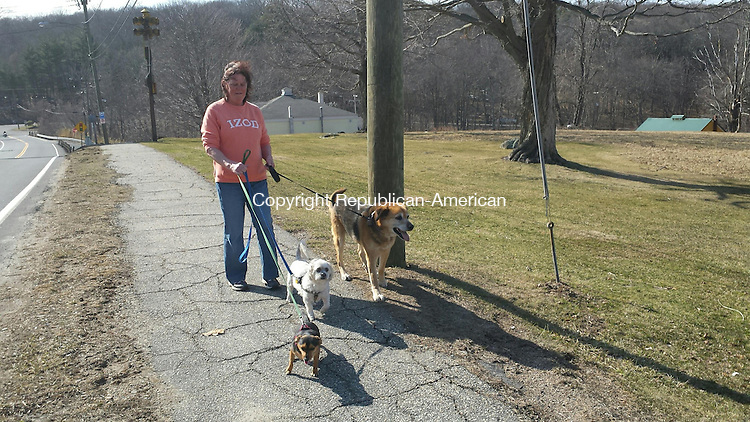 MIDDLEBURY, CT: 06 April 2015: 040615BB01 -- MIDDLEBURY  --- Janice Rehkamp of Middlebury walks three dogs along Whittemore Road on a sunny Monday afternoon. From left are her friend's dogs Oliver and Kia and Rehkamp's dog, Turbo. Bill Bittar Republican-American