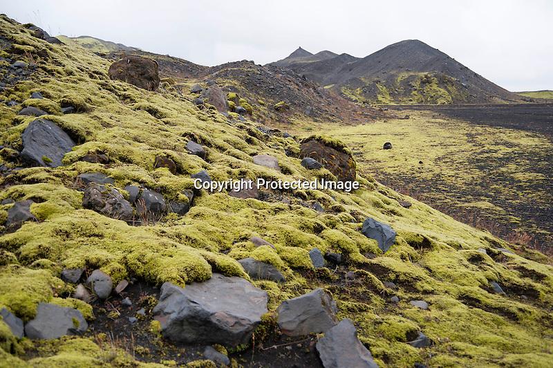 Katla Lava Moss Iceland