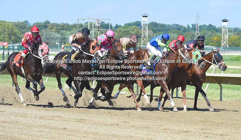 Scenes from around the track on Pennsylvania Derby Day on September 19, 2015 at Parx Racing in Bensalem, Pennsylvania.  (Bob Mayberger/Eclipse Sportswire)