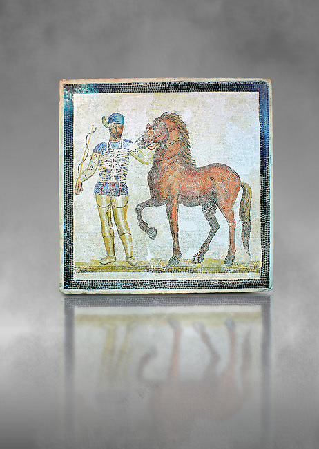 Roman geometric floor mosaic depicting Blue Faction Charioteer and his horse from the Circus  from  a room of a villa  in the locality Baccano near the Via Cassia, Rome. Beginning of the 3rd century AD. National Roman Museum, Rome, Italy