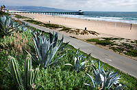 Beaches of Los Angeles County