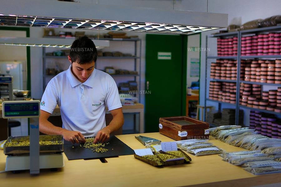 Bresil, etat Minas Gerais, Muzambinho (Nord de Sao Paulo), 30 octobre 2012.<br /> <br /> Societe Stockler, negociant-exportateur de cafe, partenaire de Nespresso dans le cadre du programme AAA. <br /> Mateus Henrique Conceicau procede a la pesee des echantillons afin de constituer des lots homogenes. <br /> Reportage les Chants de cafe_soul of coffee, realise sur les acteurs terrain du programme de developpement durable Triple AAA de Nespresso.<br /> <br /> Brazil, Minas Gerais, Muzambinho, (North of Sao Paulo), October 30, 2012 <br /> <br /> Stockler, Commercial Coffee Exporter, Partner of Nespresso AAA Sustainable Quality Program.<br /> Mateus Henrique Conceicau weighs the samples to ensure the bags are all the same weight and size.  <br /> Assignment: les Chants de cafe_ Soul of Coffee, implemented on the fields of Nespresso&rsquo;s AAA Sustainable Quality Program.