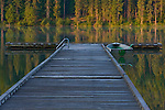 Layers of tree reflected in the calm mornig waters, as the sun rises and the mist lifts. A rowboat at the dock. Round Lake state park, Sagle, Idaho, USA