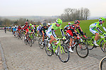 The chasing pelethon including Peter Sagan (SVK) Cannondale Pro Cycling pass over the cobbled climb of Eikenberg near Maarkedal during the 56th edition of the E3 Harelbeke, Belgium, 22nd  March 2013 (Photo by Eoin Clarke 2013)