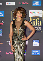 Bollywood - IIFA Weekend Tampa Bay 2014 - Day 2