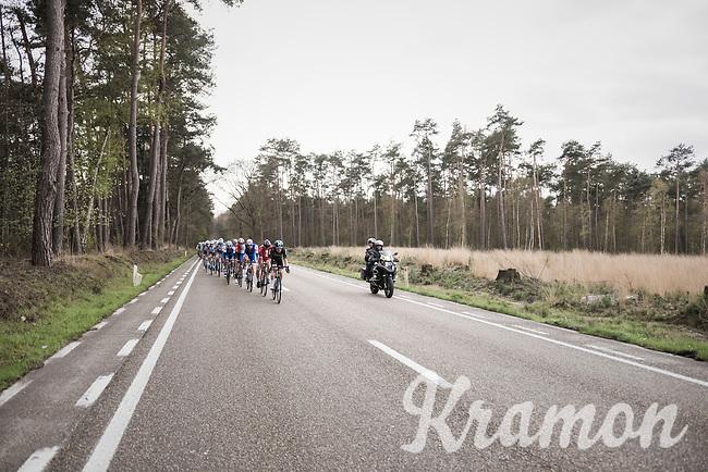 Luke Rowe (GBR/SKY) pacing the peloton<br /> <br /> 105th Scheldeprijs 2017 (1.HC)<br /> 1 Day Race: Mol &rsaquo; Schoten (BEL/202km)