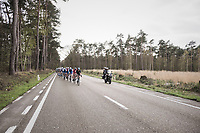 Luke Rowe (GBR/SKY) pacing the peloton<br /> <br /> 105th Scheldeprijs 2017 (1.HC)<br /> 1 Day Race: Mol › Schoten (BEL/202km)