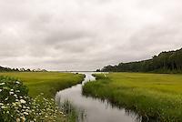 &quot;A River Runs Through It&quot;<br /> New Suffolk, Long Island