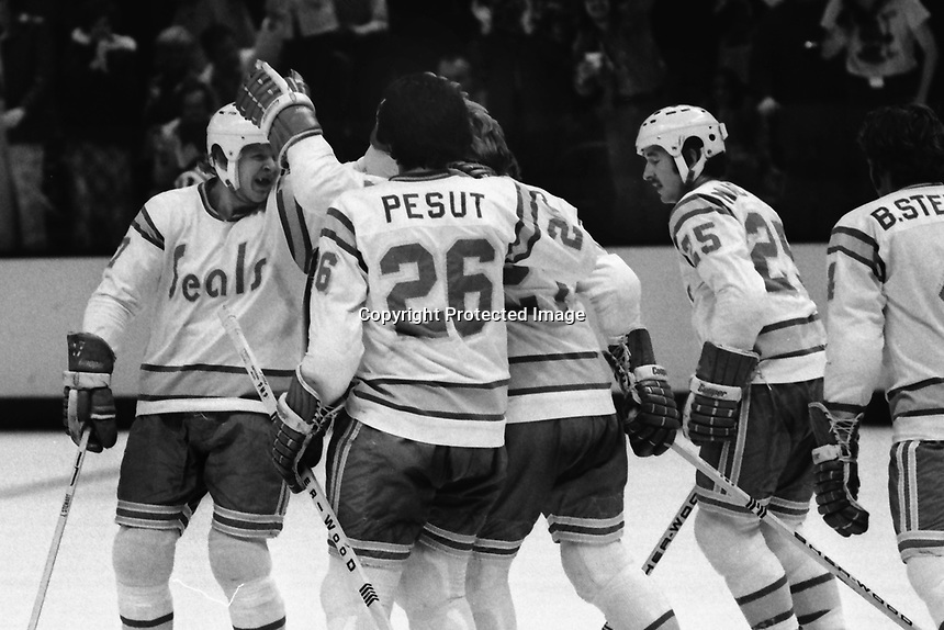 Seals goal by Stan Weir against the Toronto Maple Leafs. (1975 photo/Ron Riesterer)