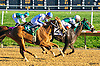 Miss Paradise winning at Delaware Park on 10/10/16
