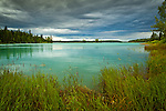 Calm surface of Kenai River, Kenai Wildlife Refuge, Southcentral Alaska, Summer.