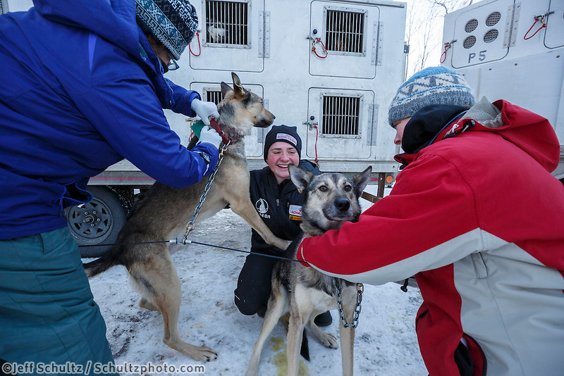 Rookie musher Laura Neese (center) holds two of her dogs as they are examined by volunteer race veterinarians at the pre-race vet-check for dogs running this year's 2017 Iditarod at Iditarod Headquarters in Wasilla, Alaska.  Wednesday March 1, 2017<br /> <br /> Photo by Jeff Schultz/SchultzPhoto.com  (C) 2017  ALL RIGHTS RESVERVED