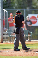 Umpire Zach Tieche during an Illinois State Redbirds game against the Indiana Hoosiers on March 4, 2016 at North Charlotte Regional Park in Port Charlotte, Florida.  Indiana defeated Illinois State 14-1.  (Mike Janes/Four Seam Images)