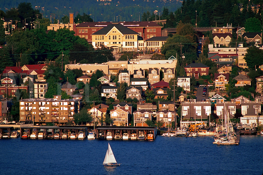 Houses along the lakeshore with passing sailboat, Seattle, Washington