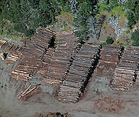 aerial photograph logging coastal Santa Cruz county, California