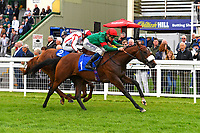 Winner of The First Carlton Novice Auction Stakes Div 2 Grove Perry r(red cap) ridden by David Probert and trained by Andrew Balding   during Evening Racing at Salisbury Racecourse on 11th June 2019