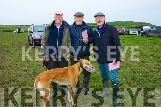 At the Ballyheigue Coursing on Sunday were Ricardo Donovan, Sean Lucey and Kevin Cummins with Electric Spree
