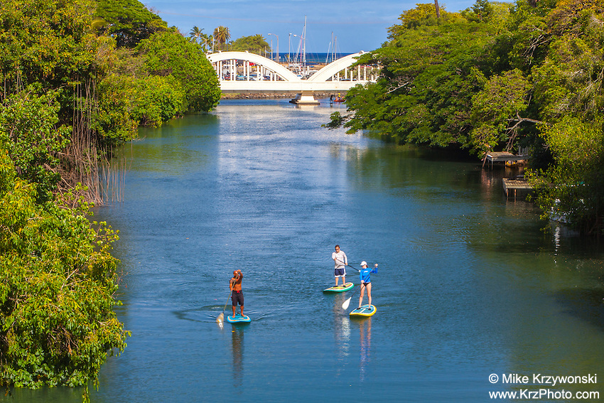 Stand-up Paddleboarders on Anahulu Stream in Haleiwa, North Shore, Oahu, Hawaii