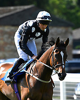 Excellent Sounds ridden by Charles Bennett goes down to the start of The Cara Glass Fillies' Handicap (Class 5),  during Father's Day Racing at Salisbury Racecourse on 18th June 2017