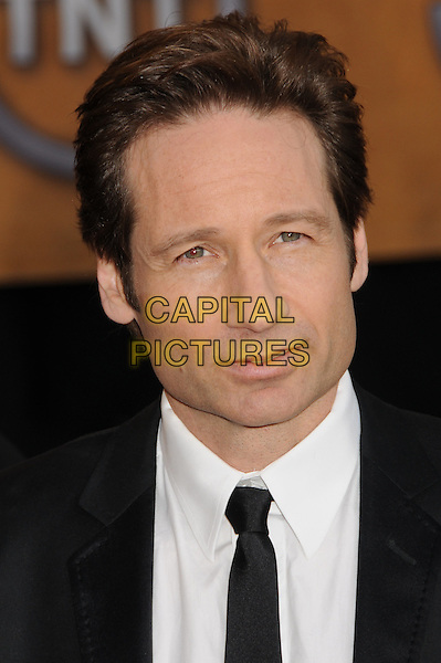 DAVID DUCHOVNY .15th Annual Screen Actors Guild Awards held at the Shrine Auditorium,  Los Angeles, California, USA, .25 January 2009..SAG red carpet arrivals portrait headshot  black suit tie .CAP/ADM/BP.©Byron Purvis/Admedia/Capital PIctures