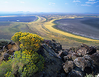 Rabbit Brush and Warner Valley as seen from Hart Mountain National Antelope Refuge, Oregon