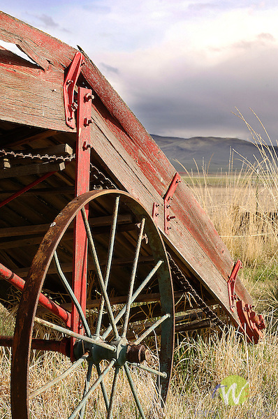 Old farm equipment in field