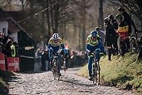 Ludwig De Winter (BEL/WB Aqua Protect-Veranclassic) &amp; Edward Planckaert (BEL/Sport Vlaanderen-Baloise) up the Molenberg (cobbles)<br /> <br /> Omloop Het Nieuwsblad 2018<br /> Gent &rsaquo; Meerbeke: 196km (BELGIUM)
