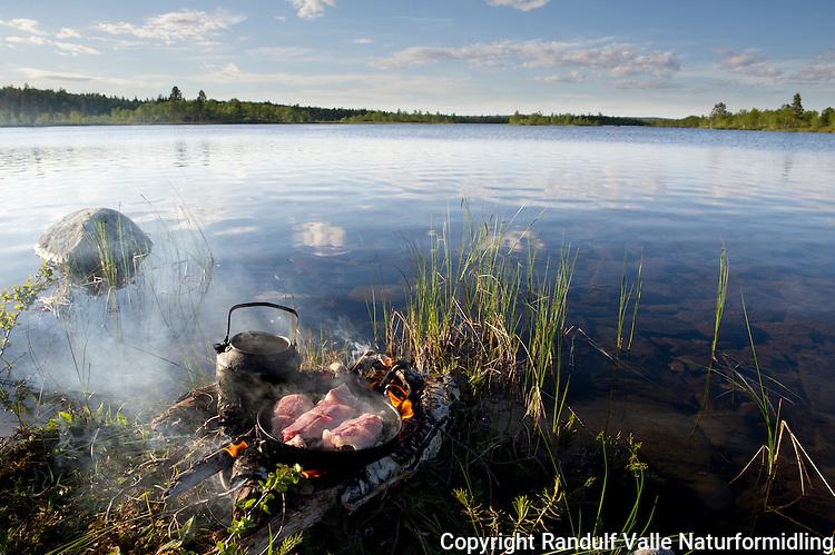 Steikepanne med harr på et bål i vannkanten. ---- Frying pan with grayling at the water edge.