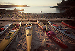 Maine, Sea Kayaking, Maine Island Trail, Penobscot Bay, Green's Island, Heron Neck, kayaks beached at campsite, New England, USA, Atlantic Ocean,.