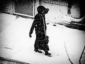Snow, Alexandria, VA