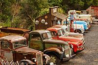 Row of old trucks, Palouse region of eastern Washington.