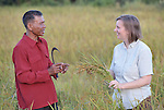 Katherine Parker, right, a United Methodist missionary, discusses the rice harvest with Yorth Chhean in the Cambodian village of Pheakdei. Parker works with the Community Health and Agricultural Development program of the Methodist Mission in Cambodia.