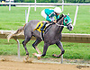 Oldfashioned Club winning at Delaware Park on 6/19/17