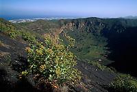 Spanien, Kanarische Inseln, Gran Canaria, Caldera de Bandama